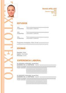 Formato De Curriculum Vitae Moderno Para Descargar En Word