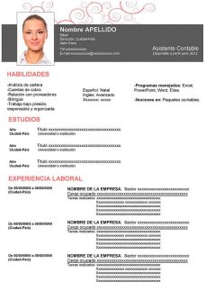 Formatos Curriculum Vitae Word Narco Penantly Co