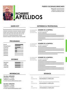 Formato Curriculum Vitae Basico Chile
