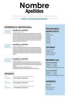 Curriculum Vitae En Ingles Para Editar En Word Cv English