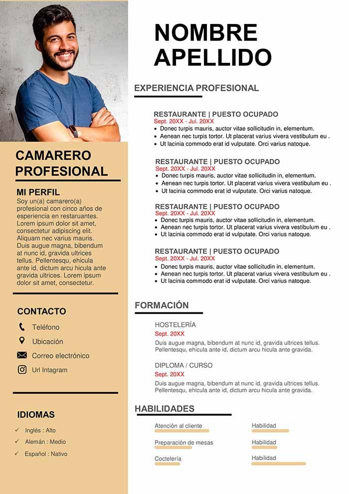 Ejemplo De Curriculum Vitae Para Camarero Modelo De Cv