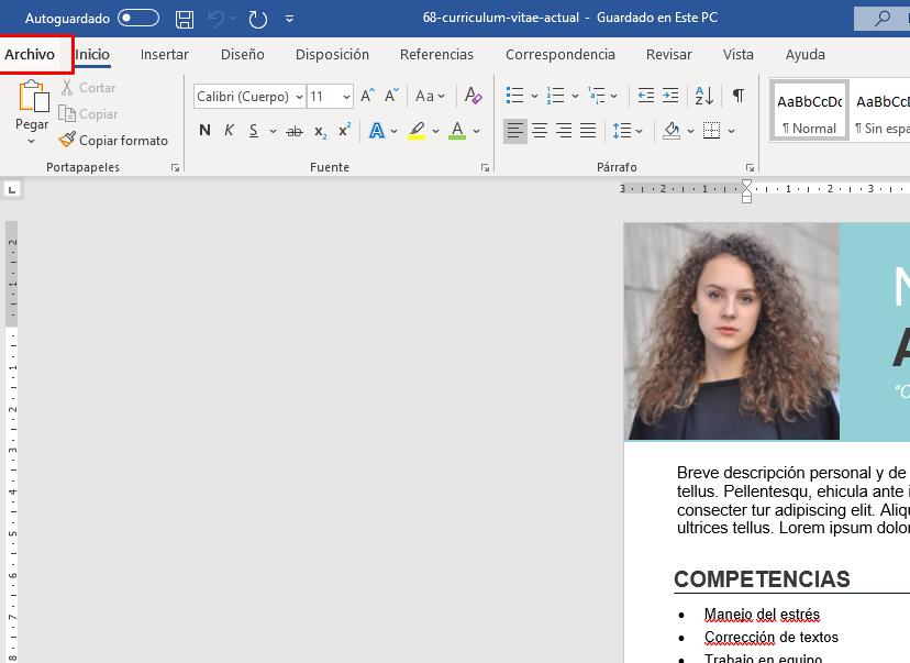 hacer-curriculum-en-pdf
