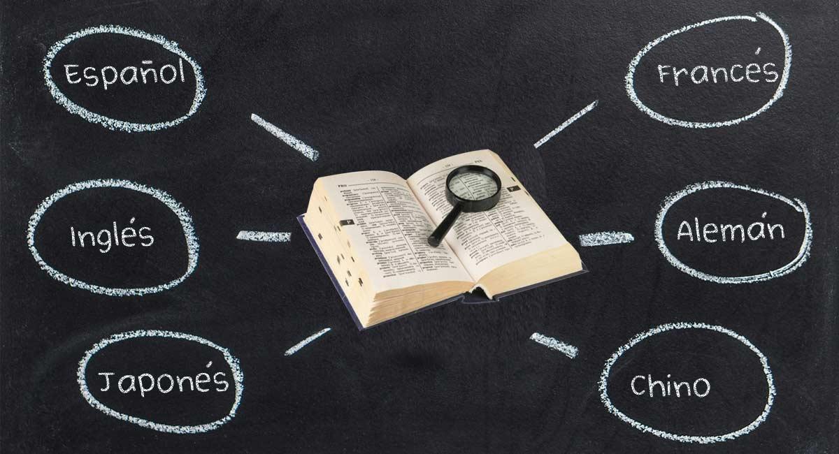 idiomas en un curriculum