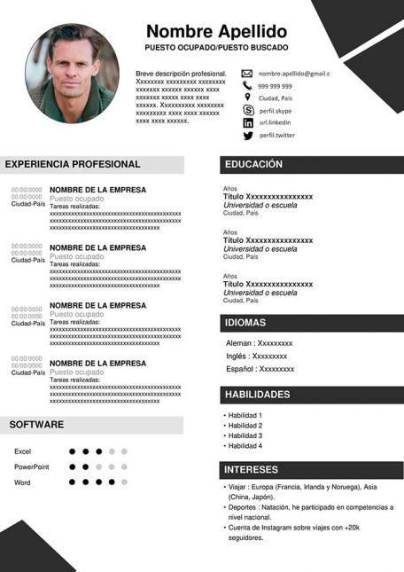 ejemplo de curriculum con infografía