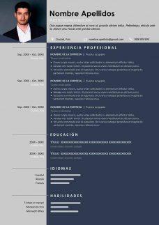 plantilla-curriculum-elegante-profesional
