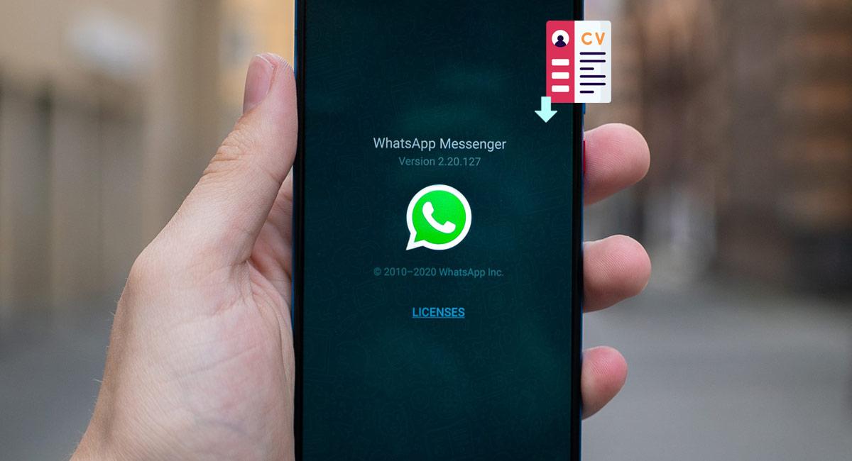 como enviar tu curriculum por whatsapp
