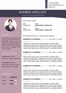 modelo-curriculum-original