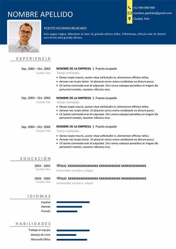 formato de curriculum venezolano