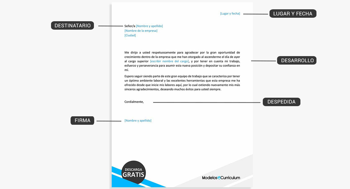 carta-formal-estructura