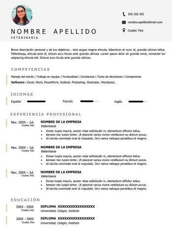 curriculum vitae veterinario ejemplo