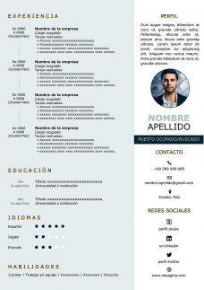 curriculum negocios internacionales gratis