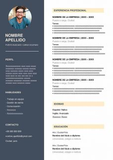 Modelos De Curriculum Vitae 2018 2019 Para Word Modelos Cv