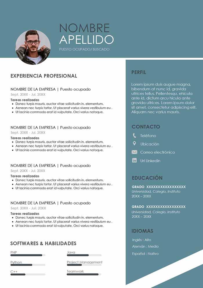 ejemplo de curriculum desarrollador web